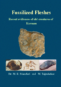 Image for Fossilized Fleshes - Recent evidences of old creatures of Kerman
